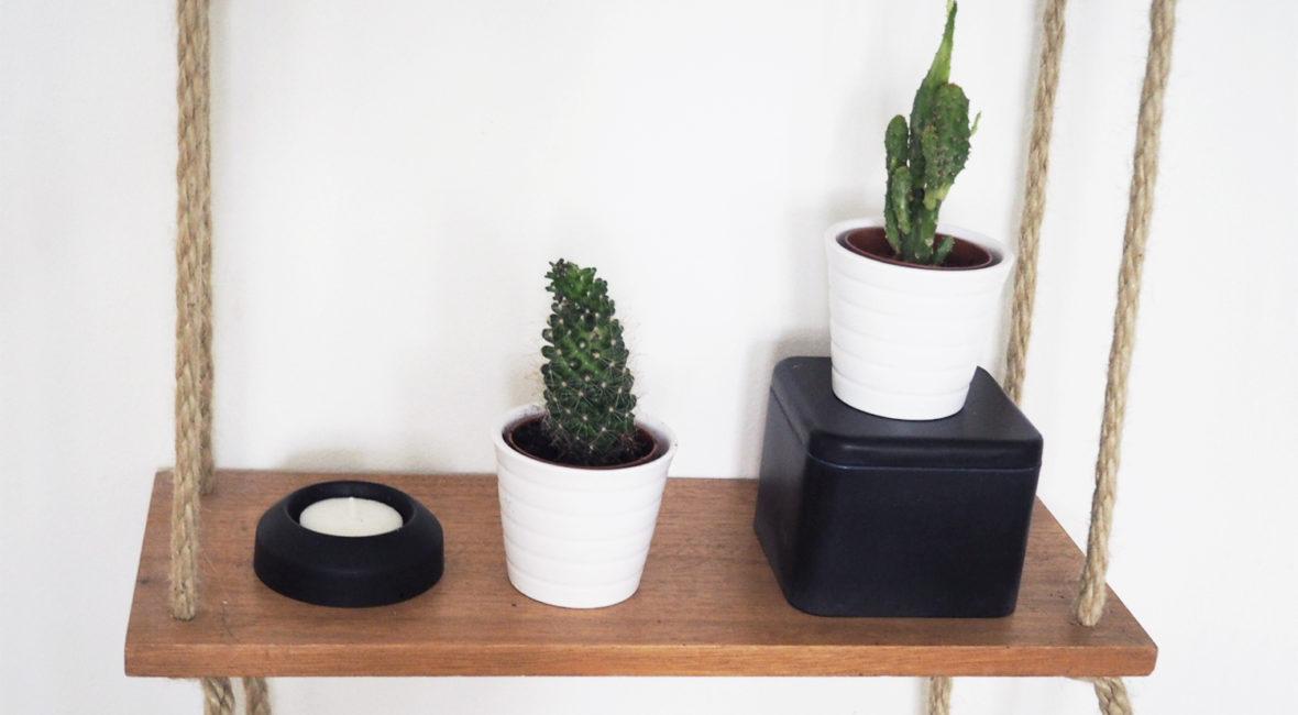 diy-kaktus-regal