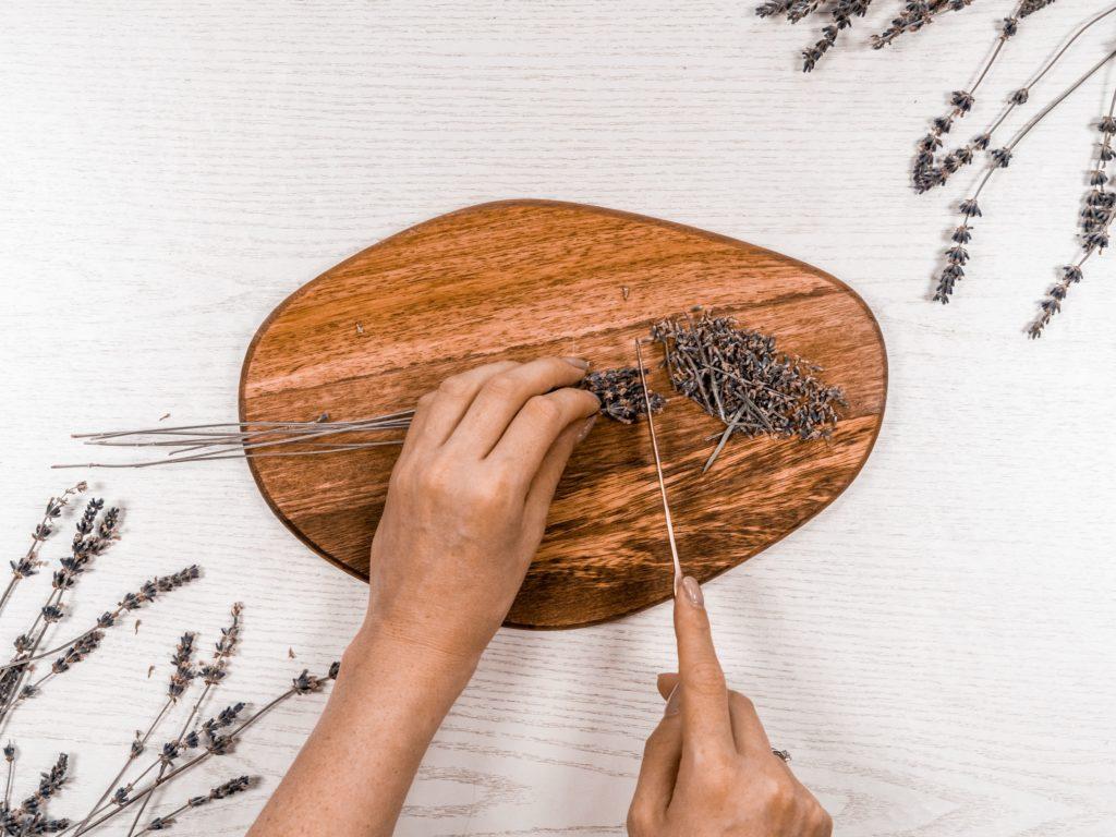 lavendel-klein-schneiden